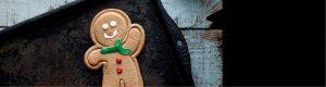 Gino Gingerbread Man